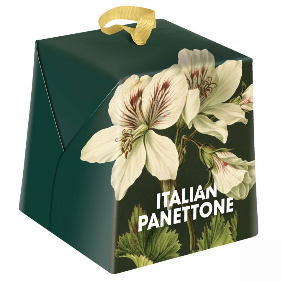 Art of Nature Panettone 500 gram